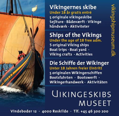 Vikinge museet