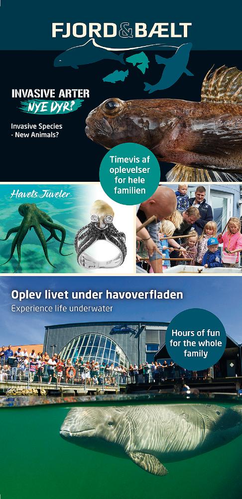 Fjord og Bælt