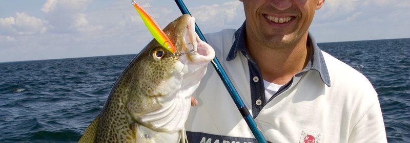 fisker-med-torsk